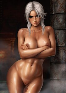 Rating: Explicit Score: 33 Tags: breast_hold ciri dandon_fuga naked nipples pussy tagme tattoo the_witcher_3 uncensored User: Radioactive
