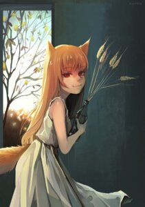 Rating: Safe Score: 5 Tags: animal_ears dress erroten holo spice_and_wolf tagme tail User: dick_dickinson