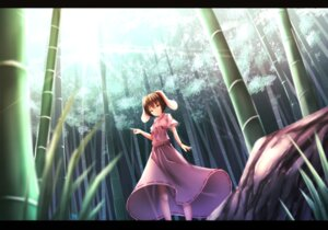 Rating: Safe Score: 32 Tags: animal_ears bunny_ears inaba_tewi touhou waterdog User: sylver650