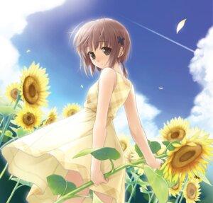 Rating: Safe Score: 13 Tags: amatsume_akira dress hashimoto_takashi sphere summer_dress yosuga_no_sora User: Radioactive