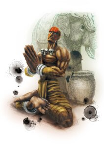 Rating: Questionable Score: 2 Tags: capcom dhalsim ikeno_daigo male street_fighter street_fighter_iv User: Yokaiou