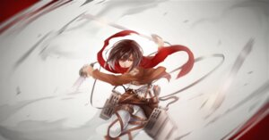 Rating: Safe Score: 30 Tags: aixuan mikasa_ackerman shingeki_no_kyojin sword uniform weapon User: tapoutlacie