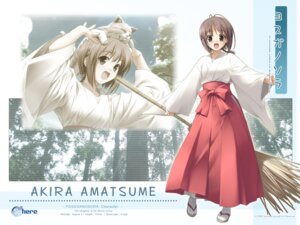 Rating: Safe Score: 8 Tags: amatsume_akira miko neko sphere wallpaper yosuga_no_sora User: myshana