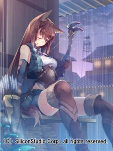 Rating: Safe Score: 70 Tags: animal_ears gyakushuu_no_fantasica kokka_han tail weapon wet wet_clothes User: Mr_GT