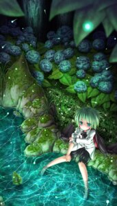 Rating: Safe Score: 35 Tags: koruri touhou wriggle_nightbug User: 椎名深夏