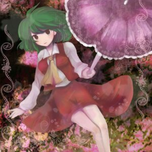 Rating: Safe Score: 2 Tags: kazami_yuuka swami touhou User: konstargirl