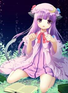 Rating: Safe Score: 54 Tags: animal_ears patchouli_knowledge shiramori_yuse tail touhou User: TassadaR