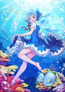 Rating: Safe Score: 35 Tags: blann cirno dress feet skirt_lift touhou wings User: RyuZU
