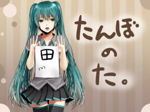 Rating: Safe Score: 18 Tags: hatsune_miku hinase_kanoto thighhighs vocaloid User: aihost