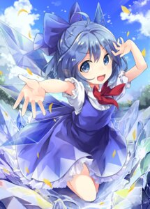Rating: Safe Score: 47 Tags: cirno kedama tamano_kedama touhou wings User: Mr_GT