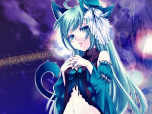Rating: Safe Score: 17 Tags: animal_ears mogami_rio nekomimi tail wallpaper User: charunetra
