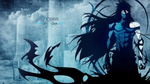 Rating: Safe Score: 6 Tags: bleach tagme wallpaper User: hkr008