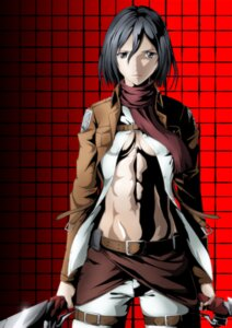 Rating: Questionable Score: 33 Tags: cleavage mikasa_ackerman muguramochi no_bra open_shirt shingeki_no_kyojin sword underboob User: vkun