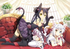 Rating: Questionable Score: 141 Tags: animal_ears ass cleavage heterochromia lolita_fashion mauve nekomimi pantsu stockings tail thighhighs User: blooregardo