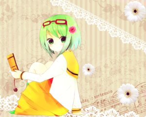 Rating: Safe Score: 12 Tags: gumi totona vocaloid wallpaper User: frootbat