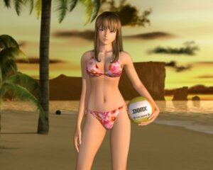 Rating: Safe Score: 37 Tags: bikini cg dead_or_alive hitomi swimsuits User: Radioactive