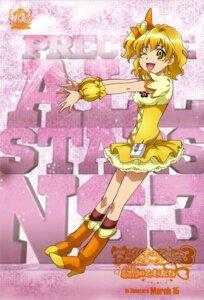 Rating: Safe Score: 6 Tags: aoyama_mitsuru fresh_pretty_cure! pretty_cure yamabuki_inori User: drop