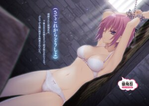 Rating: Questionable Score: 122 Tags: bondage bra cleavage digital_version pantsu sakura_neko User: AltY
