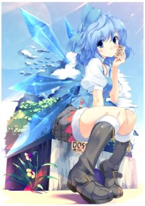 Rating: Safe Score: 42 Tags: cirno rozea touhou wings User: Mr_GT