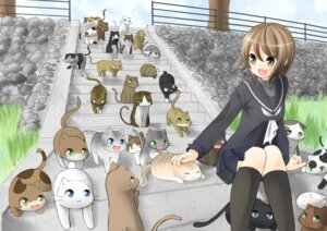 Rating: Safe Score: 14 Tags: neko nekonaka seifuku User: fairyren