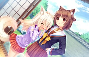 Rating: Safe Score: 44 Tags: animal_ears azuki coconut game_cg neko_works nekomimi nekopara sayori seifuku sweater tail User: Radioactive