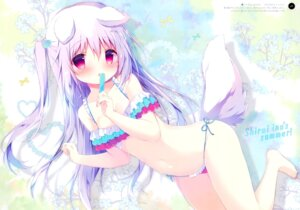 Rating: Safe Score: 70 Tags: animal_ears bikini shiratama shiratamaco shiroi_inu swimsuits tail User: kiyoe