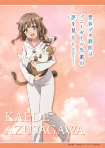 Rating: Safe Score: 17 Tags: azusagawa_kaede neko pajama seishun_buta_yarou_series tagme User: saemonnokami