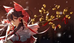 Rating: Safe Score: 42 Tags: hakurei_reimu nye touhou User: Mr_GT