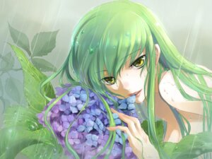 Rating: Questionable Score: 62 Tags: c.c. code_geass isu naked wet User: yumichi-sama