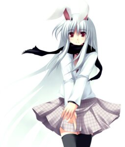 Rating: Safe Score: 12 Tags: animal_ears bunny_ears reisen_udongein_inaba thighhighs touhou User: Davison