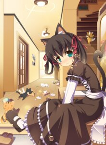 Rating: Safe Score: 48 Tags: animal_ears masaki_(machisora) neko nekomimi tail User: 椎名深夏