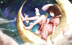 Rating: Safe Score: 21 Tags: animal_ears bunny_ears dress hoshibuchi inaba_tewi touhou User: Mr_GT