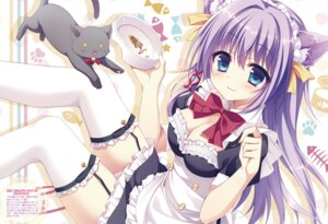 Rating: Safe Score: 87 Tags: animal_ears chericot_rozel cleavage digital_version maid matsumiya_kiseri neko nekomimi stockings thighhighs User: Twinsenzw