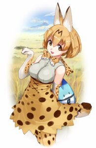 Rating: Safe Score: 23 Tags: akasa_ai animal_ears kemono_friends serval tail User: nphuongsun93