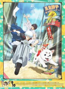Rating: Safe Score: 5 Tags: gintama kagura sadaharu sakata_gintoki shimura_shinpachi User: Radioactive