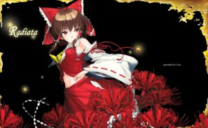 Rating: Safe Score: 9 Tags: hakurei_reimu ken-1 touhou User: yumichi-sama
