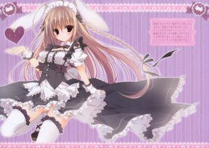 Rating: Questionable Score: 70 Tags: animal_ears fixed inugami_kira maid necotoxin nopan thighhighs User: mmqmxsg