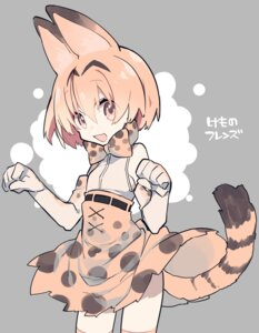 Rating: Safe Score: 19 Tags: animal_ears kemono_friends mochizuki_kei serval tail User: nphuongsun93