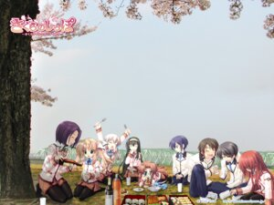 Rating: Safe Score: 12 Tags: fizz kanna pantyhose sakura_tale seifuku wallpaper User: sinzitsu