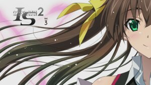 Rating: Safe Score: 27 Tags: huang_lingyin infinite_stratos infinite_stratos_2 seifuku wallpaper User: SHM222