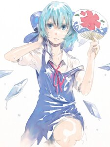 Rating: Safe Score: 11 Tags: cirno rosa touhou User: Radioactive