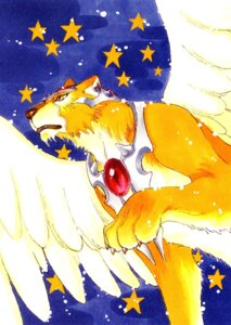 Rating: Safe Score: 1 Tags: card_captor_sakura clamp kerberos User: Share