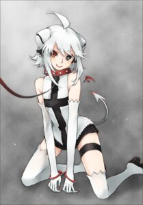 Rating: Safe Score: 27 Tags: garter heterochromia reika_(clovia_studio) tail thighhighs User: Nekotsúh