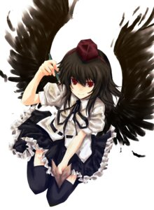 Rating: Safe Score: 11 Tags: hisago shameimaru_aya touhou wings User: konstargirl