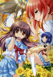 Rating: Safe Score: 14 Tags: alpha seifuku sharin_no_kuni_himawari_no_shoujo User: admin2