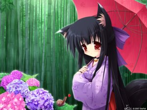 Rating: Safe Score: 11 Tags: animal_ears kimono nekomimi wallpaper yokuran User: yumichi-sama