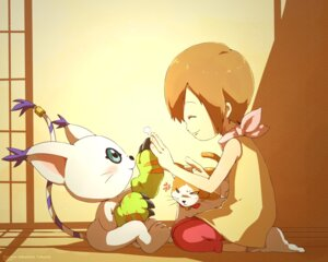 Rating: Safe Score: 25 Tags: ceal-sakura-ai digimon gatomon neko yagami_hikari User: charunetra
