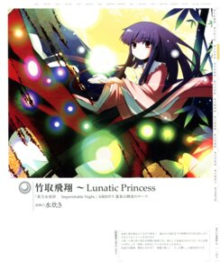 Rating: Safe Score: 8 Tags: houraisan_kaguya mizutaki touhou User: fireattack