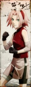 Rating: Safe Score: 26 Tags: haruno_sakura naruto naruto_shippuden stick_poster User: Radioactive