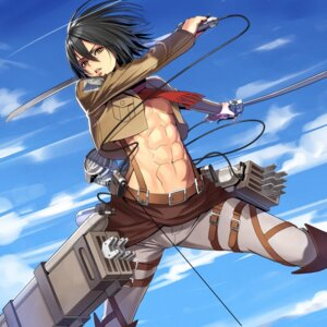 Rating: Safe Score: 14 Tags: mikasa_ackerman ogami shingeki_no_kyojin sword User: vkun